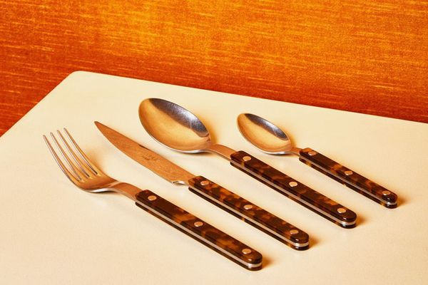 Tortoise Flatware in Brushed Stainless Steel