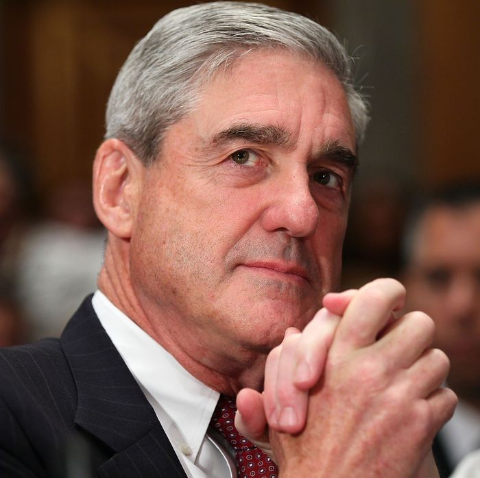Image result for Everything We've Learned From Robert Mueller's Investigation