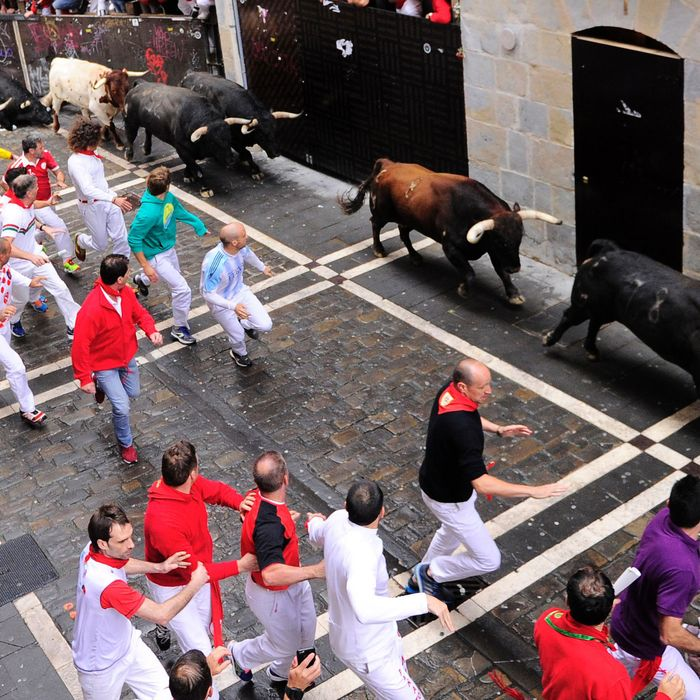 Participants run along side Nunez del Cubillo's fighting bulls on the seventh day of the San Fermin bull run festival in Pamplona, northern Spain on July 13, 2016.