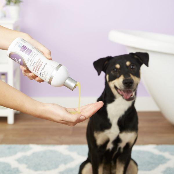 Veterinary Formula Clinical Care Antiseptic & Antifungal Shampoo