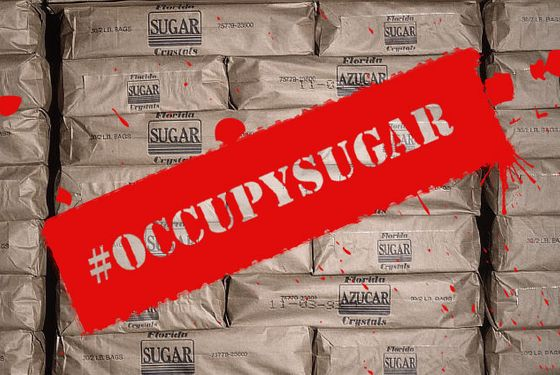 December 1991, Florida, USA --- Bags of packed sugar at a sugar mill owned by the Okeelanta Sugar corporation. | Location: Glades, Florida, USA.  --- Image by © Tony Arruza/CORBIS