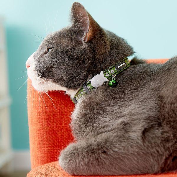 Red Dingo Reflective Cat Collar