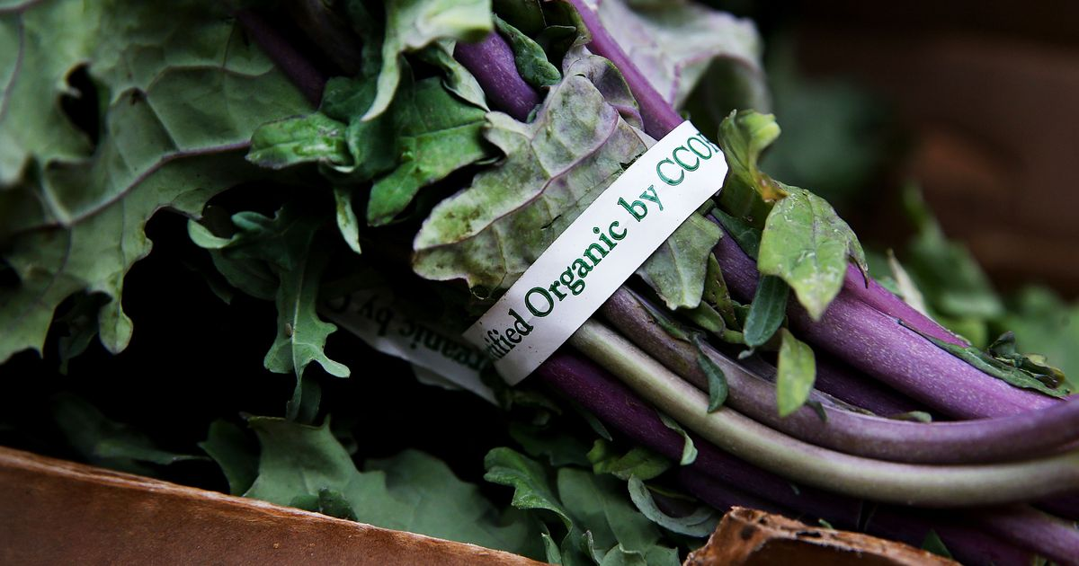 Kellogg's and General Mills Are Paying Farmers to Switch to Organic