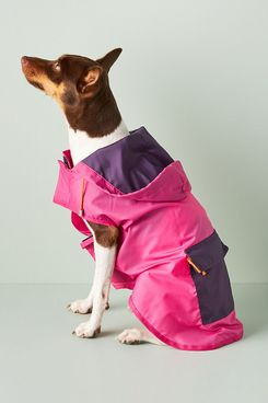 Ware of the Dog Dog Anorak Raincoat