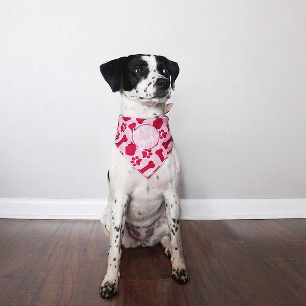 hecho Dog Birthday Girl Bandana