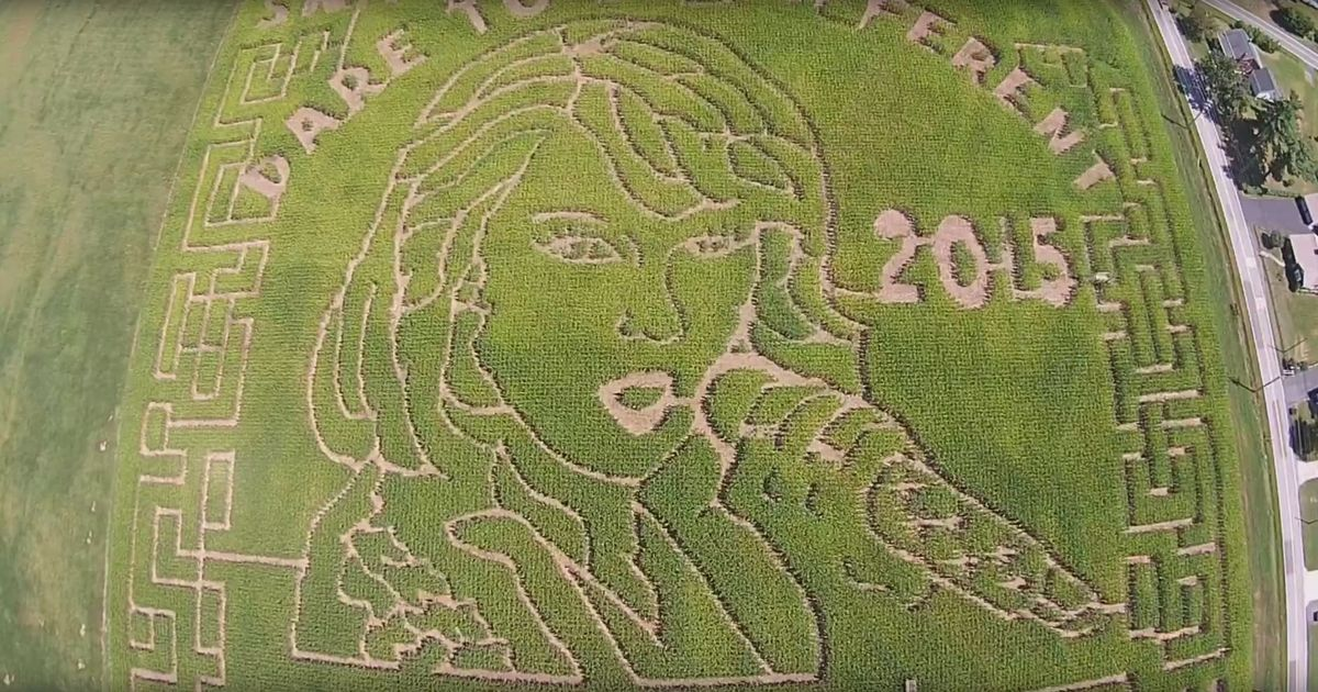Is There a Phallus in This Taylor Swift Corn Maze?
