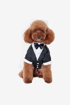 Black Tuxedo Suit For Dogs