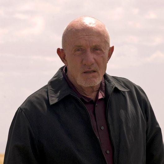 Mike (Jonathan Banks) - Breaking Bad - Season 4, Episode 10