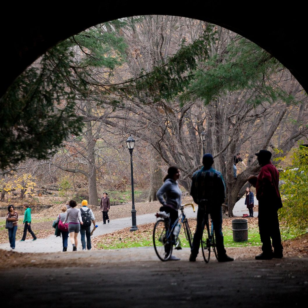 NEW YORK, NY - NOVEMBER 27:  People walk and bike along a path during the mild autumn weather in Prospect Park on November 27, 2011 in the Brooklyn borough of New York City.  The Thanksgiving holiday weekend saw unseasonably mild weather with temperatures in the mid to high 60s in the northeast.  (Photo by Michael Nagle/Getty Images)