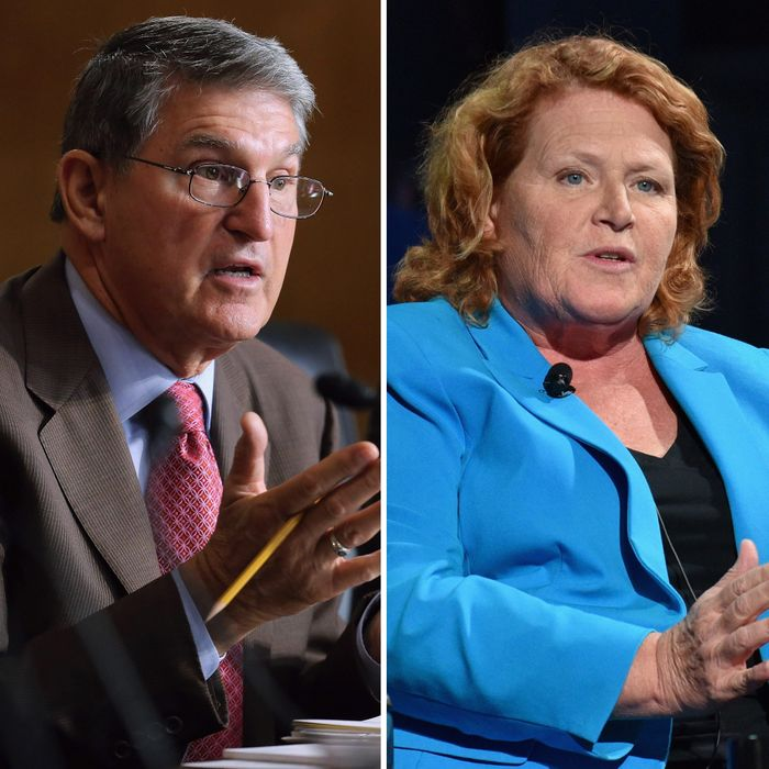 Trump Might Be Scouting Democratic Senators for His Cabinet