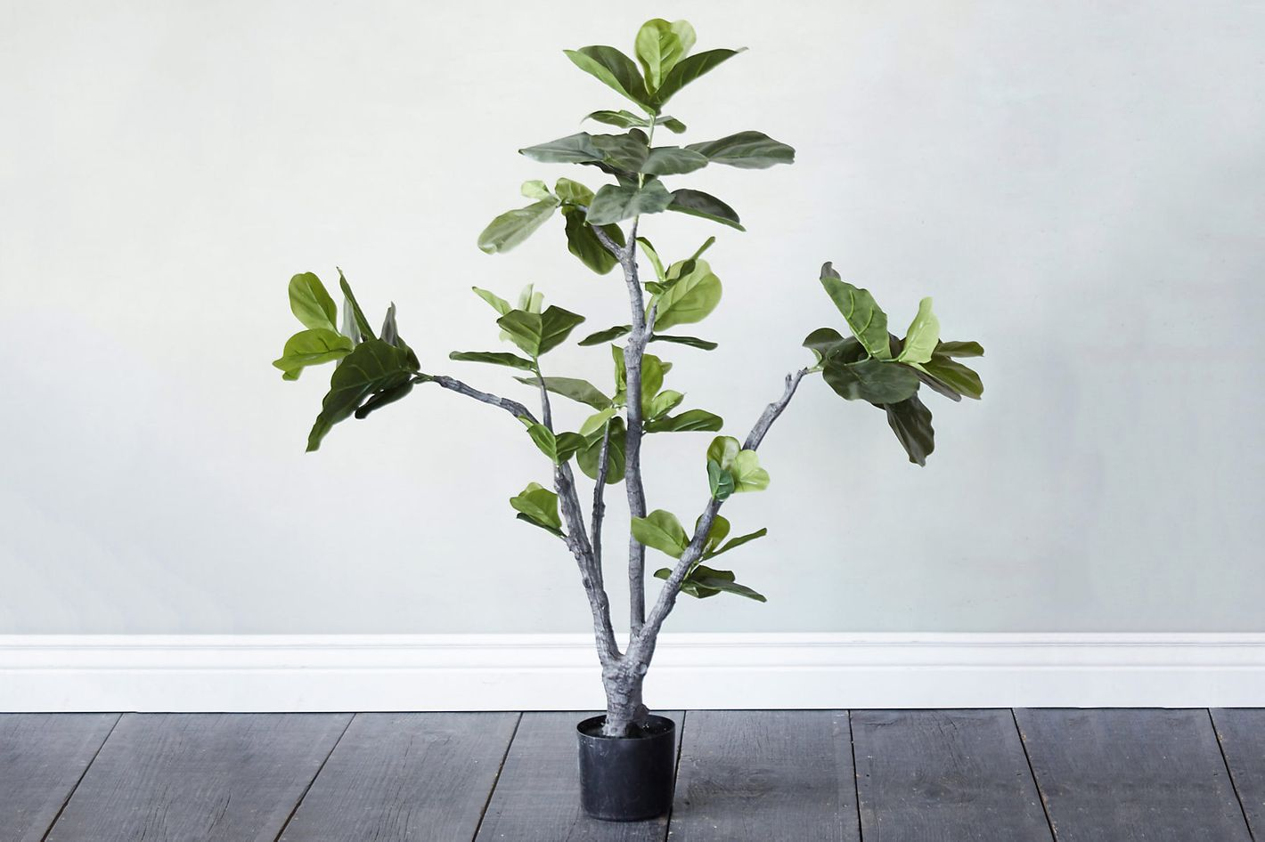 Terrain Faux Fiddle Leaf Fig Tree