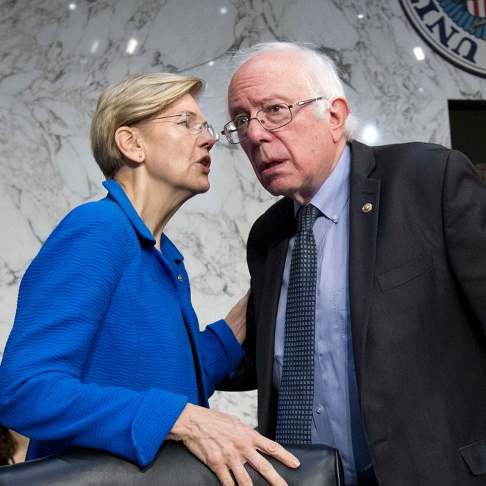 Image result for warren and sanders