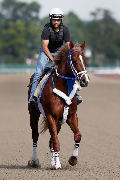 ELMONT, NY - JUNE 06: Guyana Star Dweej trains on the track in preparation for the 144th Belmont Stakes at Belmont Park on June 6, 2012 in Elmont, New York.  (Photo by Rob Carr/Getty Images)