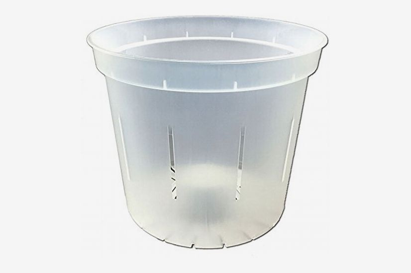 "5"" Slotted Clear Orchid Pot - 3 Pack (Clear)"