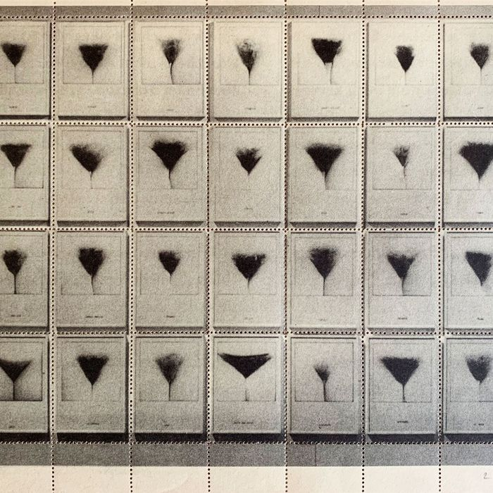 The Mystery Of A Page Of 36 Pube Stamps