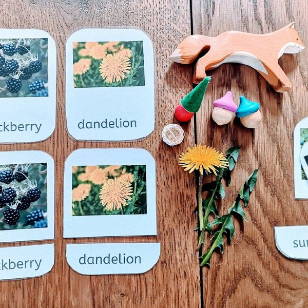Edible Plants - Montessori Learning Cards