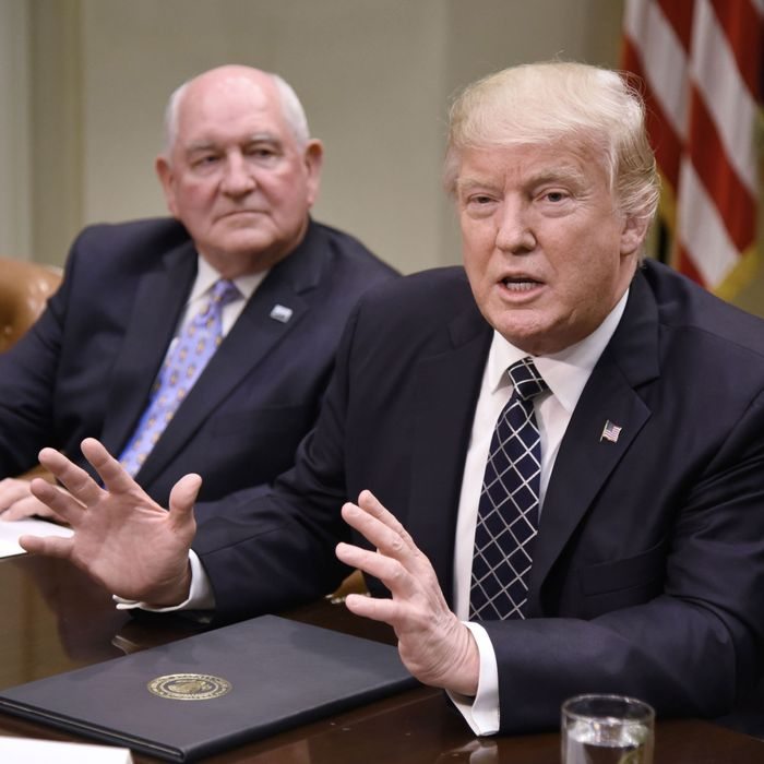 Donald speaks as Agriculture Secretary Sonny Perdue looks on during a roundtable with farmers.