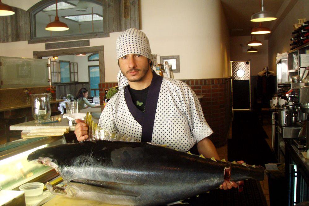 Big fish.