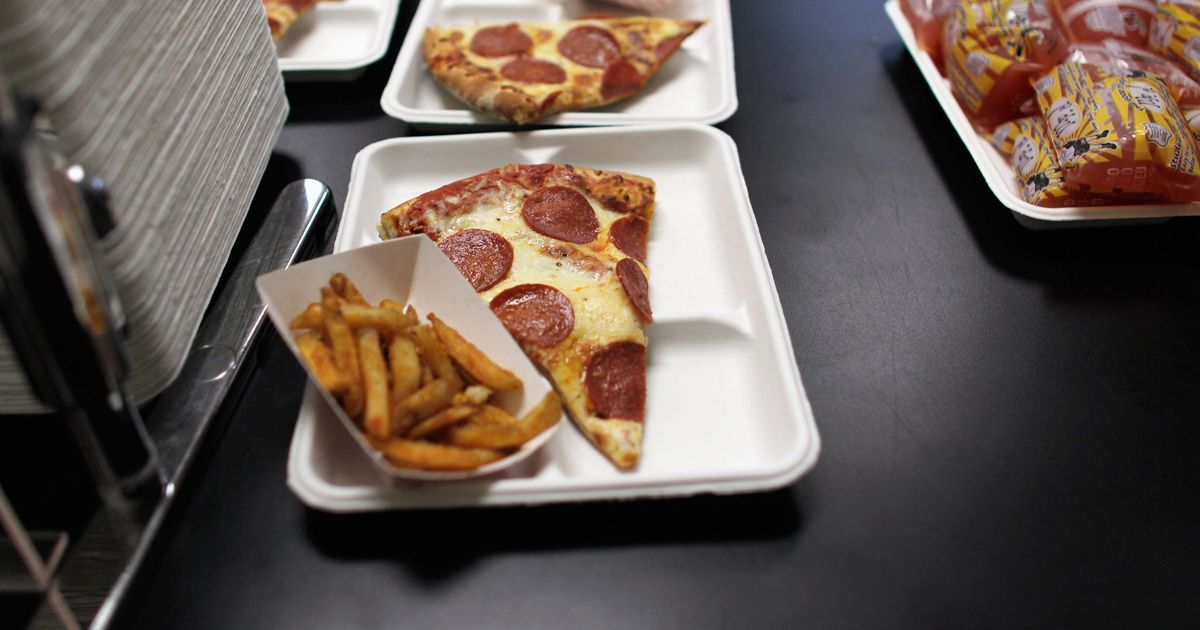 essays on unhealthy school lunches