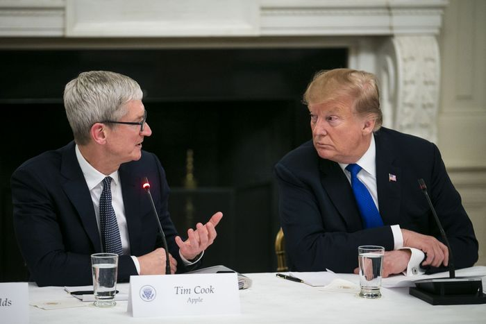 Trump Calls Apple CEO Tim Cook 'Tim Apple' to His Face