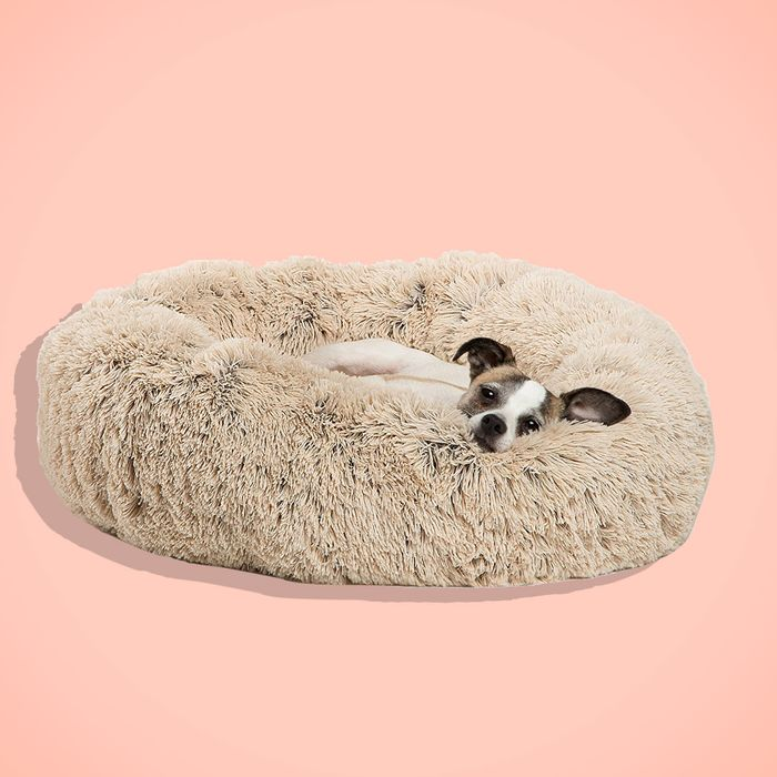 d330cc11cfcb The Best Dog Beds on Amazon, According to Hyperenthusiastic Reviewers