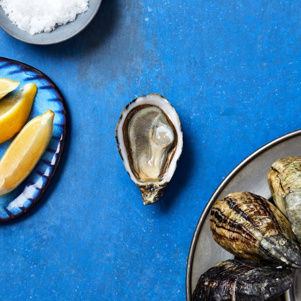 Taylor Shellfish Farms Shigoku Oysters