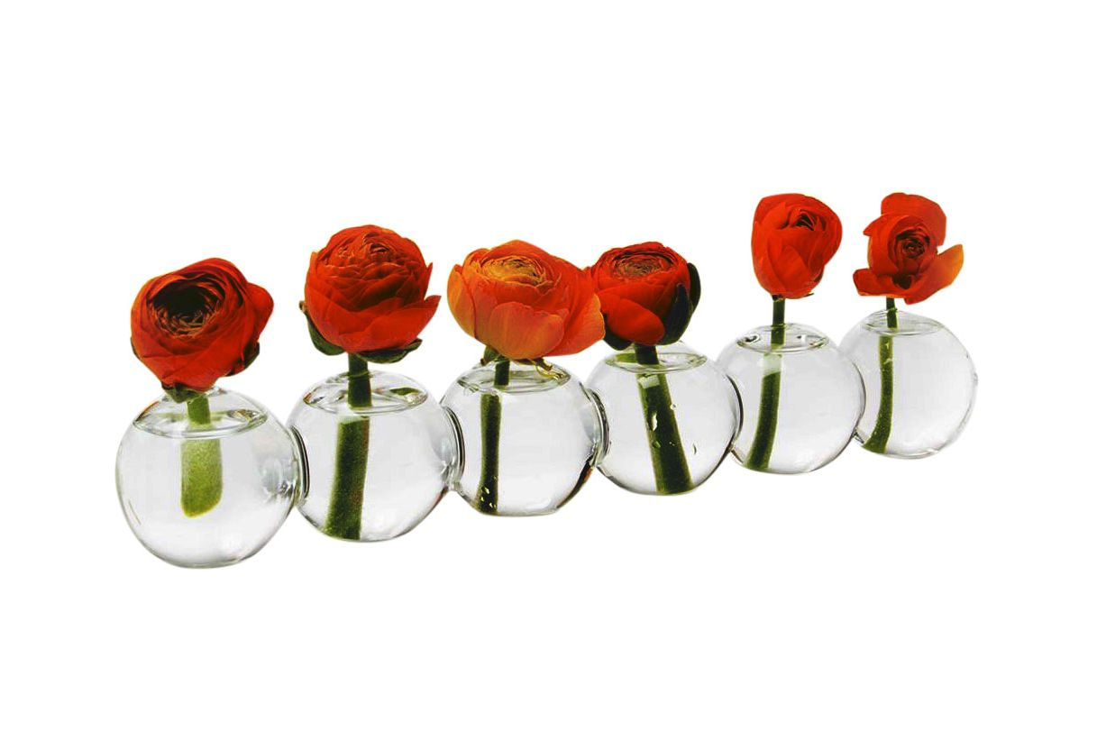 Chive Caterpillar Glass Bud Vases