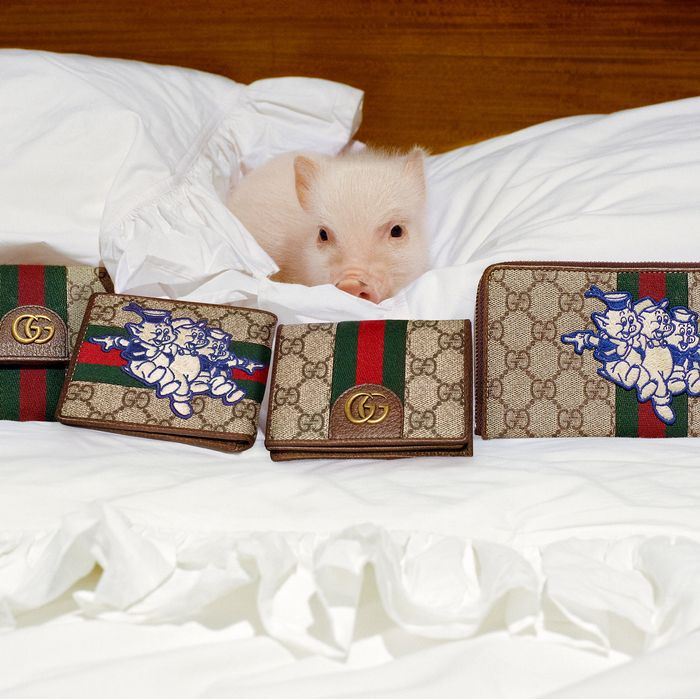 5d82f5eadc545 I Wish I Were This Pig Surrounded by Gucci