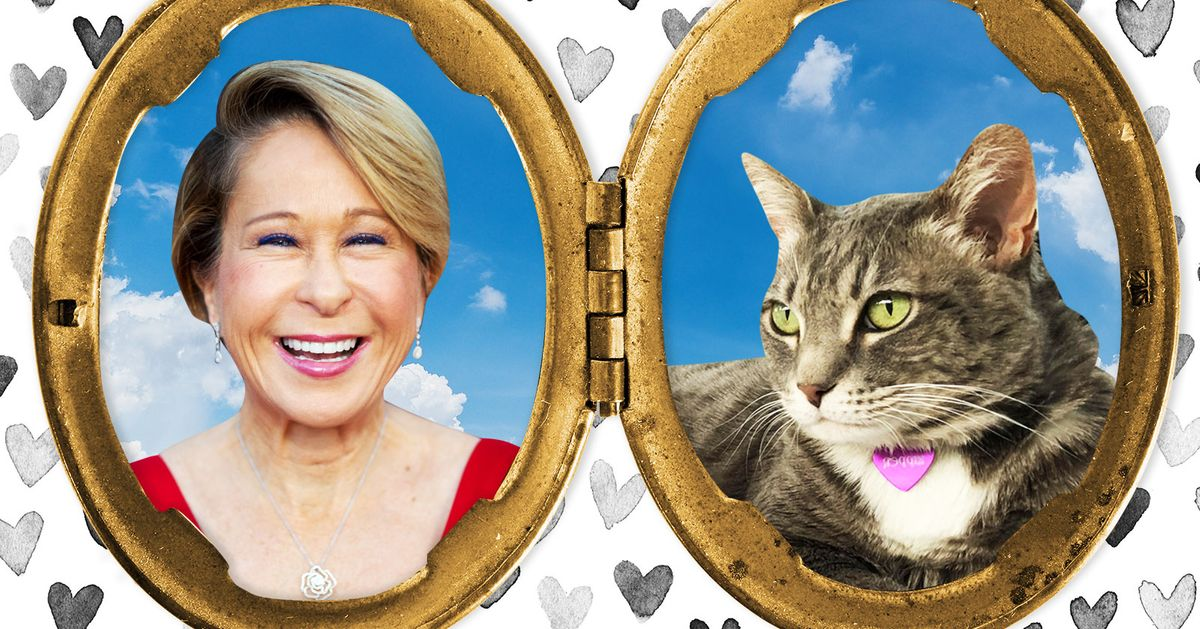 Yeardley Smith's Cats Refuse to Use the Toilet or Walk on a Leash