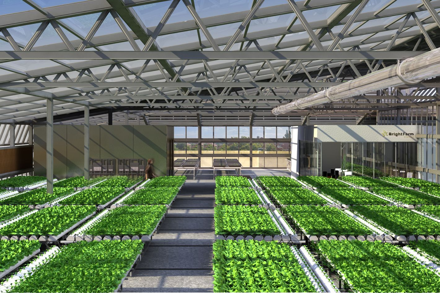 A rendering of the greenhouse.