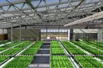 BrightFarms Wants to Keep New Yorkers in Hydroponic Veggies