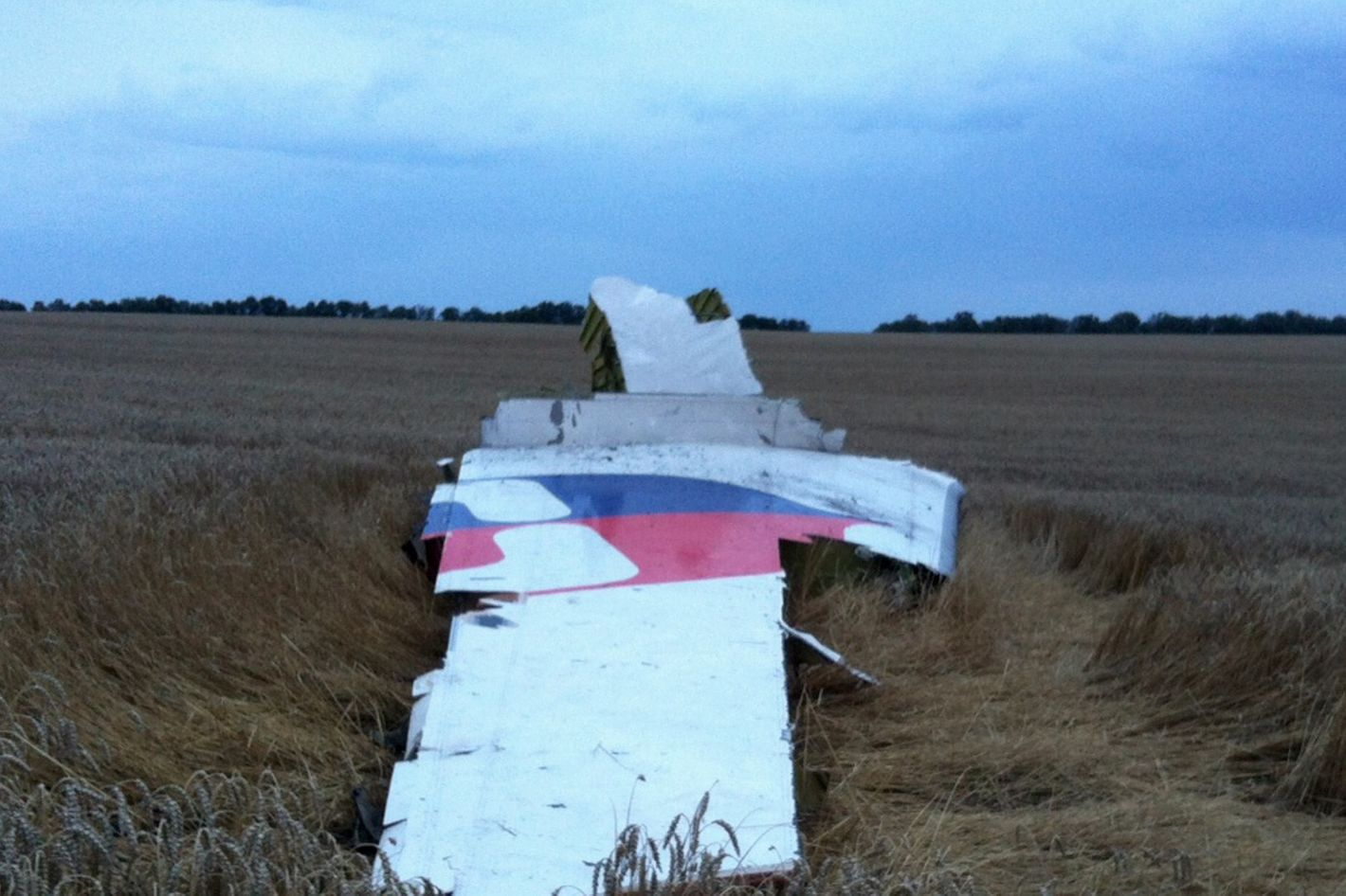 A picture taken on July 17, 2014 shows wreckages of the malaysian airliner carrying 295 people from Amsterdam to Kuala Lumpur after it crashed, in rebel-held east Ukraine. Pro-Russian rebels fighting central Kiev authorities claimed on Thursday that the Malaysian airline that crashed in Ukraine had been shot down by a Ukrainian jet.