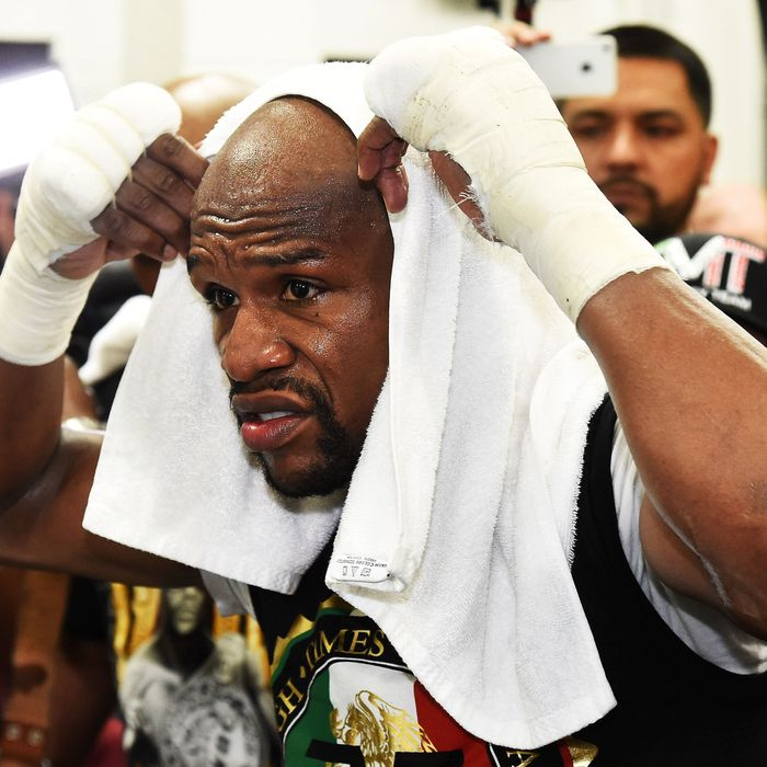 LAS VEGAS, NV - APRIL 14: WBC/WBA welterweight champion Floyd Mayweather Jr. puts a towel over his head as he works out at the Mayweather Boxing Club on April 14, 2015 in Las Vegas, Nevada. Mayweather will face WBO welterweight champion Manny Pacquiao in a unification bout on May 2, 2015 in Las Vegas. (Photo by Ethan Miller/Getty Images)