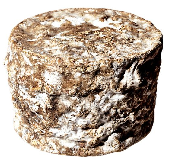 "<b>Fuzzy Wheel</b>    <i>Twig Farm (Vermont)</i>    As the name suggests, Michael Lee, the bike messenger turned cheesemonger turned cheesemaker, is proud of the bloomy rind on this aged goat-and-cow's-milk cheese. And rightly so. That well groomed fluffy mold called poil du chat (cat's fur) is responsible for all those layers of flavor and the firm but supple texture. <i>$29 a pound at <a href=""http://nymag.com/listings/stores/saxelby-cheesemongers/"">Saxelby Cheesemongers</a>.</i>"