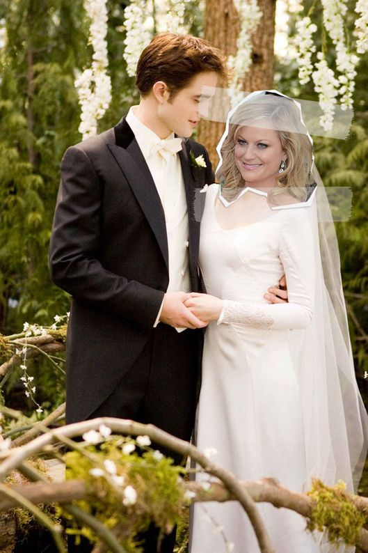 Parks and Rec\'s Leslie in Famous Wedding Gowns -- Vulture