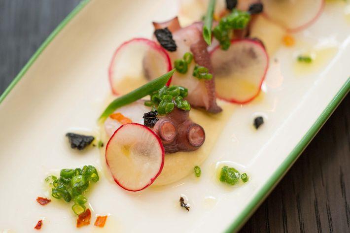 Octopus, hummus, black olive, radish, chive, chili flake.