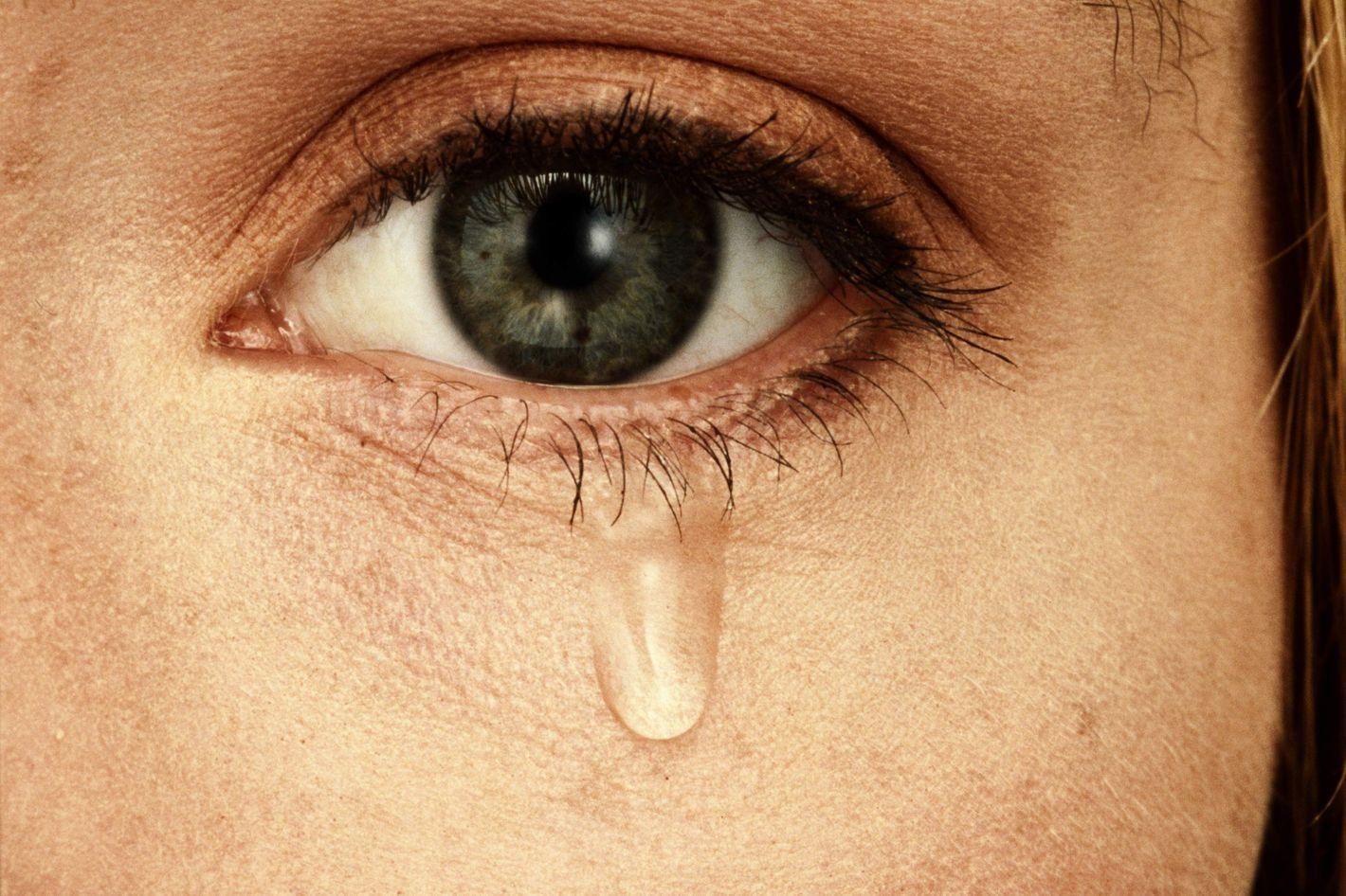 Are we willing to be moved this Advent, even to the point of tears?
