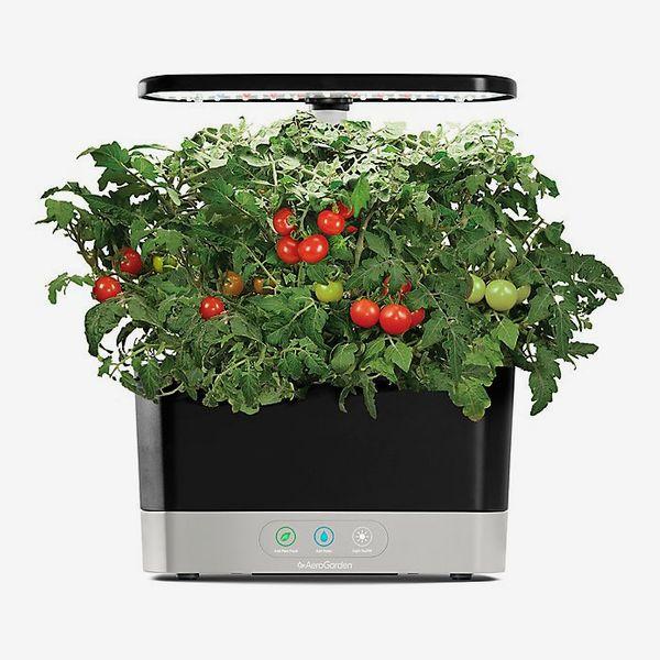 AeroGarden™ Harvest with Gourmet Herb Seed Pod Kit in Black