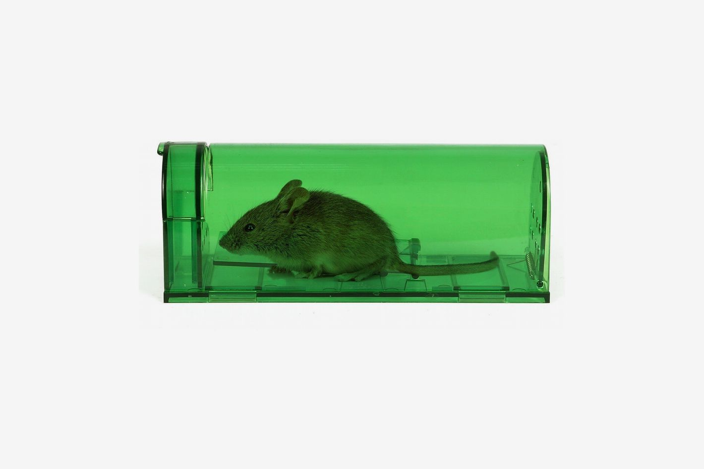 Catcha 2 Piece Humane Smart Mouse Trap