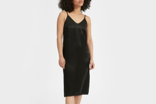 Everlane The Party Slip Dress