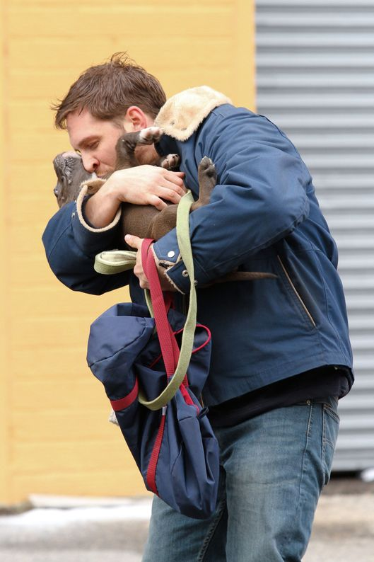 Tom Hardy spotted shooting scenes with a cute puppy for his upcoming movie 'Animal Rescue' in Brooklyn, NYC.<P>Pictured: Tom Hardy<P><B>Ref: SPL509299  110313  </B><BR/>Picture by: Splash News<BR/></P><P><B>Splash News and Pictures</B><BR/>Los Angeles:	310-821-2666<BR/>New York:	212-619-2666<BR/>London:	870-934-2666<BR/>photodesk@splashnews.com<BR/></P>
