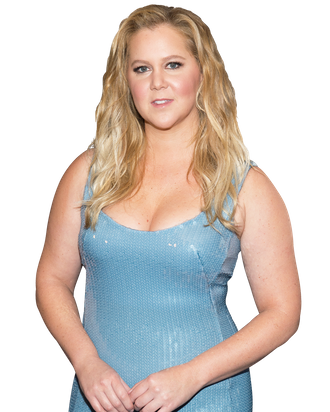 Amy Schumer On The I Feel Pretty Backlash