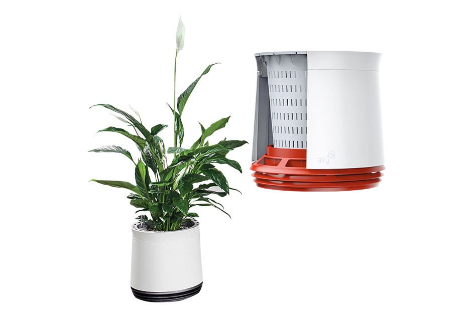 Airy Natural Air Purifier