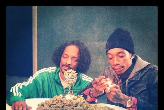 See snoop dogg and wiz khalifa with so much weed