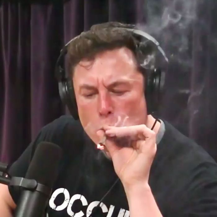 Image result for Elon Musk weed