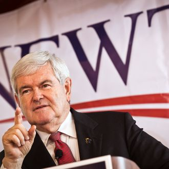 COLUMBIA, SC - DECEMBER 23: Republican presidential candidate Newt Gingrich speaks to supporters on December 23, 2011 in Columbia, South Carolina. Gingrich has been leading in the polls in South Carolina, although South Carolina Gov. Nikki Haley recently endorsed rival former Massachusetts Gov. Mitt Romney. (Photo by Richard Ellis/Getty Images)