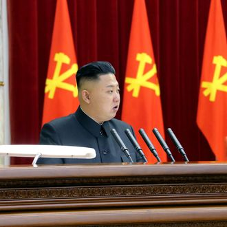 Photo released by the KCNA news agency on April 1 shows that Kim Jong-un, leader of Democratic People's Republic of Korea (DPRK), speaks during a plenary meeting of the Central Committee of the DPRK in Pyongyang, capital of the DPRK, on March 31, 2013.