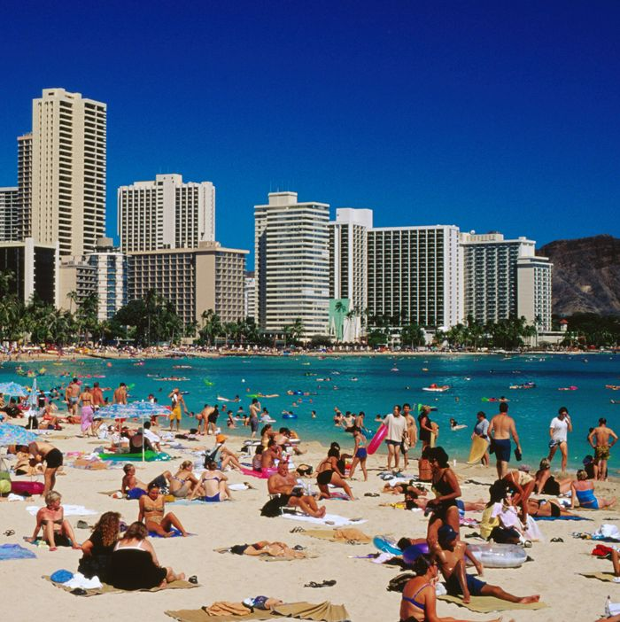 8d7b4a885 Waikiki Beach in Honolulu on the Hawaiian island of Oahu. Photo: Richard  I'Anson/Getty Images/Lonely Planet Image