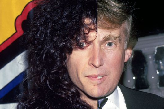thecut howard stern donald trump objectified