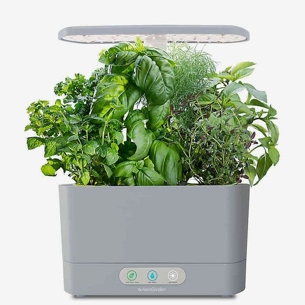 AeroGarden Harvest with Gourmet Herb Seed Pod Kit in Cool Grey